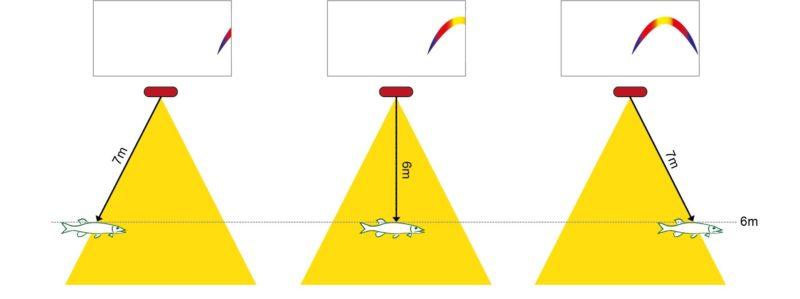 So entsteht eine Fischsichel beim Fischfinder-Angeln