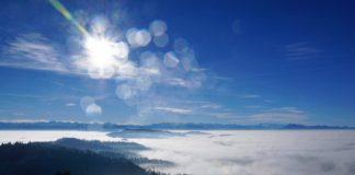zander-angeln-fruehling-herbst-sommer-winter