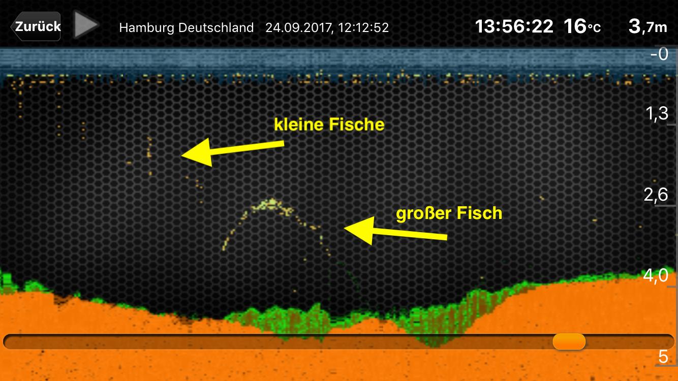 Deeper fishfinder pro kabelloses echolot f r das for Deeper pro plus fish finder