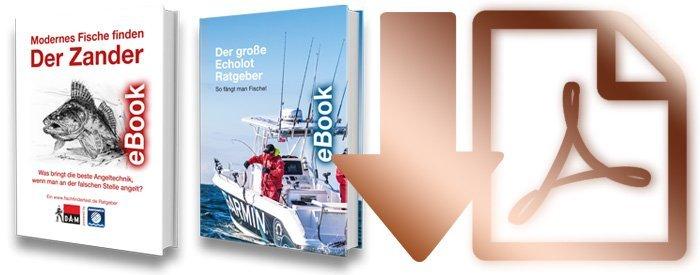 Angelbücher-ebook