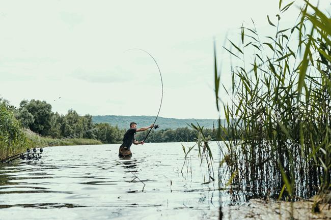 angelrute_fliegenfischen_karpfenrute