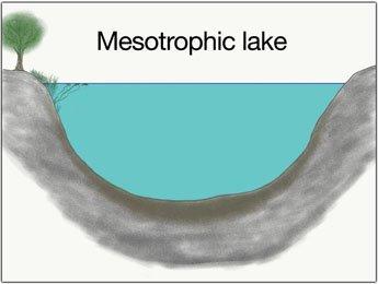 mesotropher-see-grosse-hechte-fangen