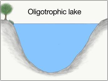 oligotropher-see-grosse-hechte-fangen